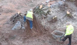 Joe Nunan Archaeology